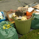 A Rubbish Free Year…could you do it?