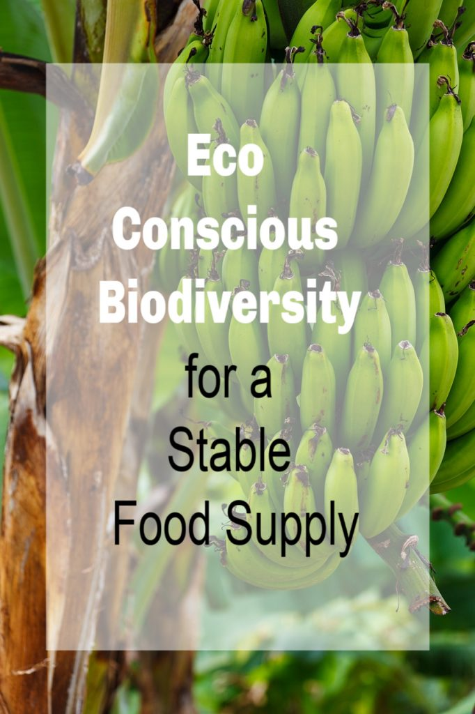 Support Eco Conscious Biodiversity for a Stable Food Supply