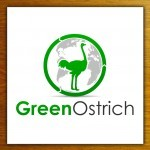 Giveaway and Discount Code: Green Ostrich Greeting Cards