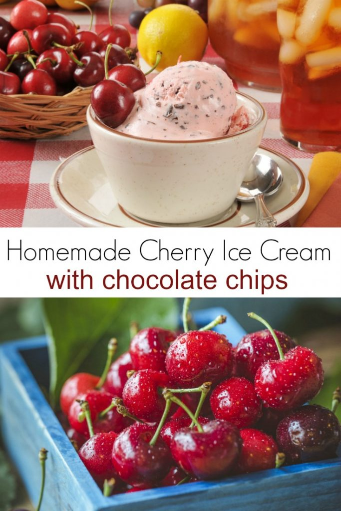 Homemade Cherry Ice Cream with Chocolate Chips