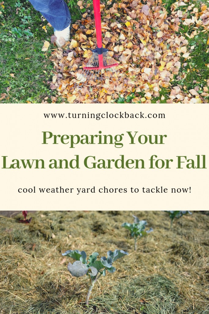 Preparing Your Lawn and Garden for Fall