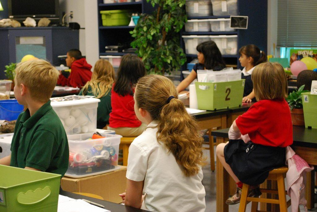Eco Friendly School Ideas for Greener Classrooms and Smaller Footprints