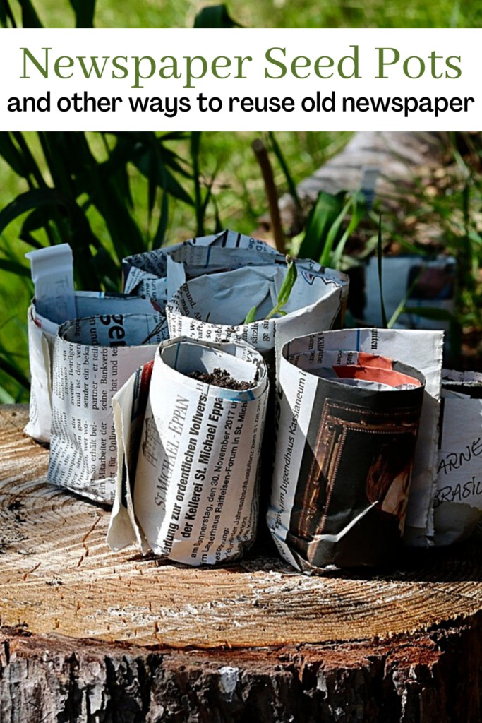 newspaper seed pots on a stump with text overlay Newspaper Seed Pots and other ways to reuse old newspaper