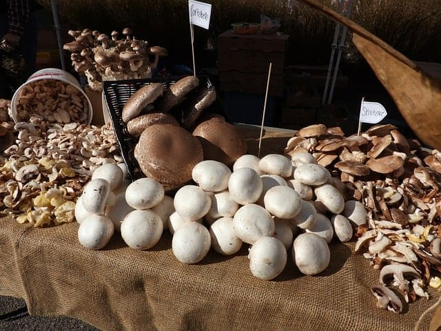 mushrooms at farmers market