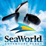 Start Planning your Spring Vacation to Sea World!