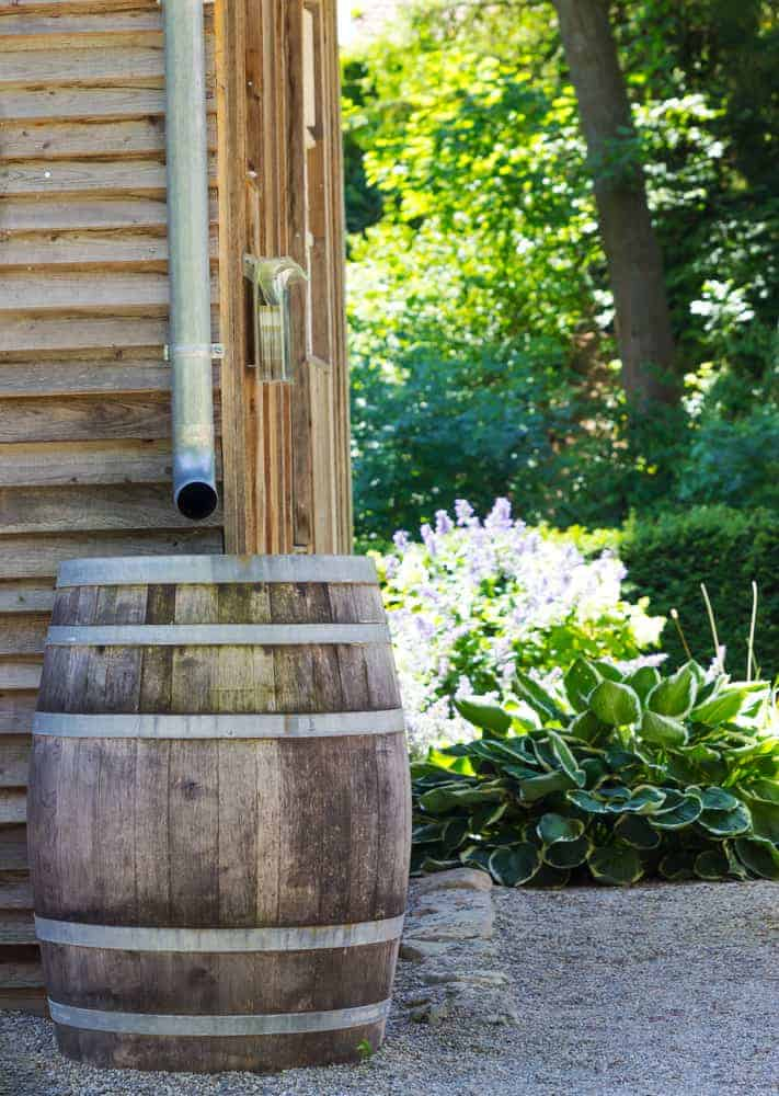 Wooden Rain Barrel collecting runoff from roof through gutters.