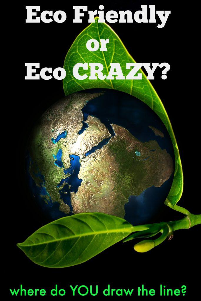 Eco friendly or eco crazy? Where do you draw the line?