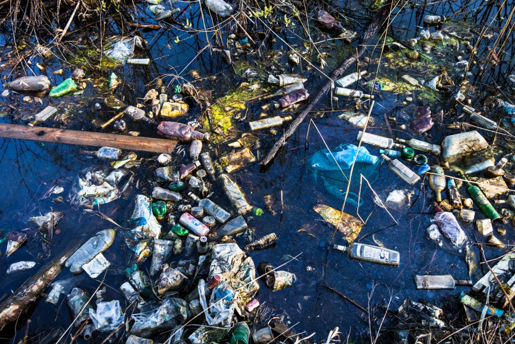 The Great Pacific Garbage Patch and reducing trash output