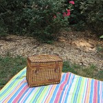 Tips for having an ecofriendly picnic!   #SCJgreenerchoices