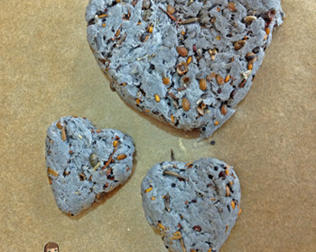 Have an Eco-friendly Valentines Day with this Heart-Shaped Seed Craft  #SCJgreenerchoices