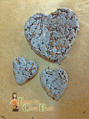 Heart Shaped Seed Bombs