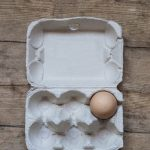 10 Uses for Egg Cartons Once You Eat All the Eggs!