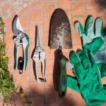 Essential Gardening Supplies for Home Gardeners