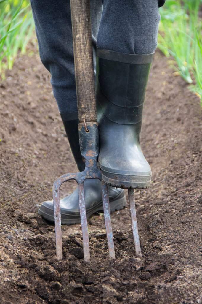 Digging spring soil with shovel