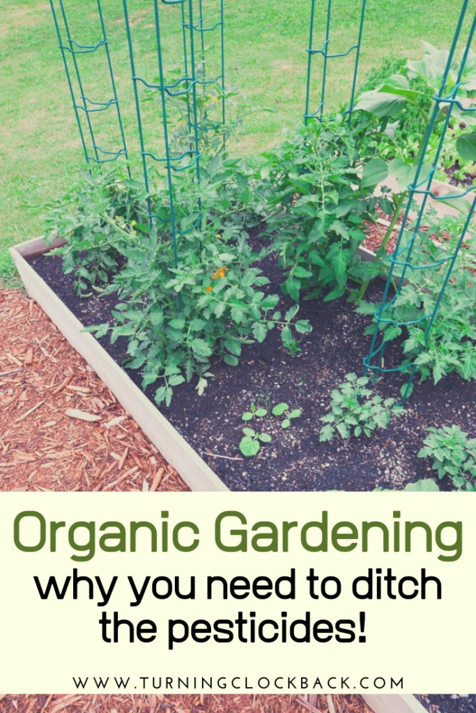 Organic Gardening why you need to ditch the pesticides!