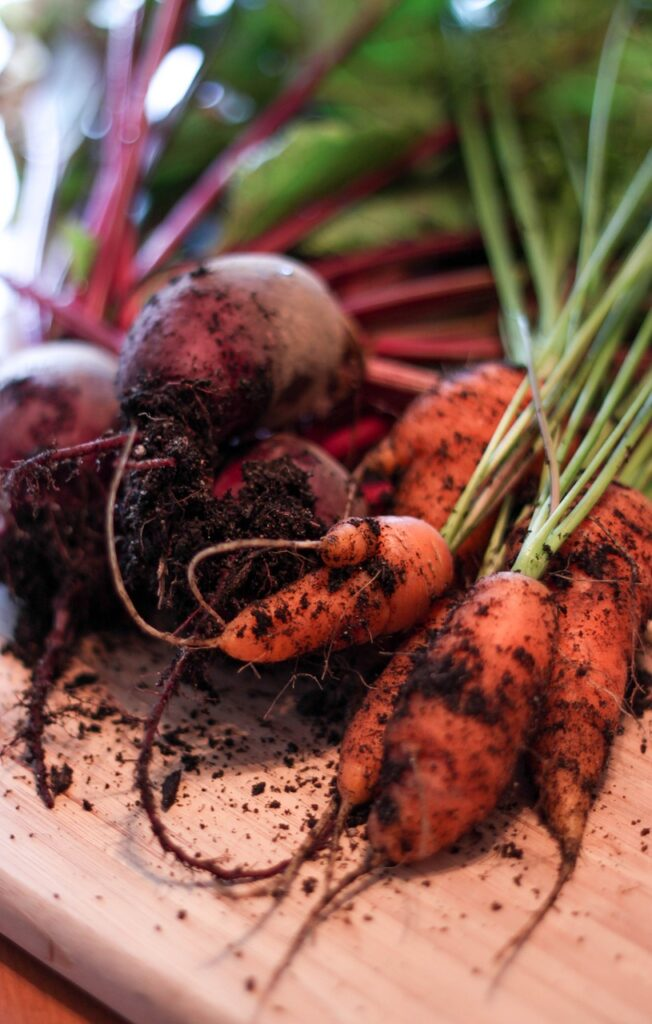 carrots and beets and soil on cutting board