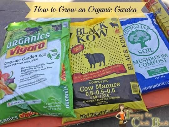 tips for growing an organic garden