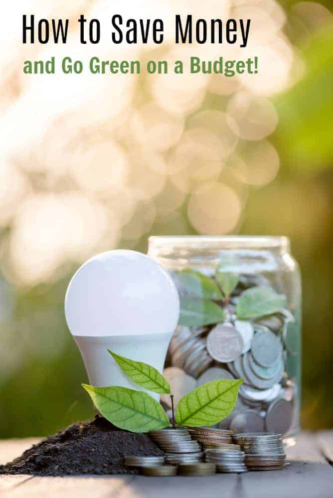 Want to buy organic but think it is too expensive?  Here are some tips on how to save money on your household budget so you can afford to go green!
