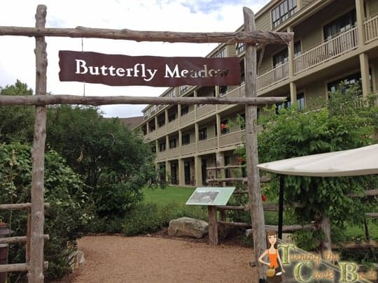 butterfly meadow Hyatt Regency Lost Pines