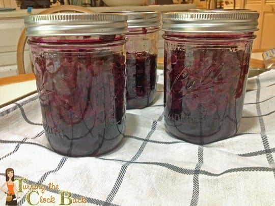 preserving blueberries in pressure canner