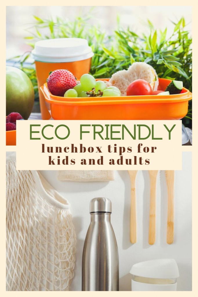 Eco friendly lunchbox tips for kids and adults