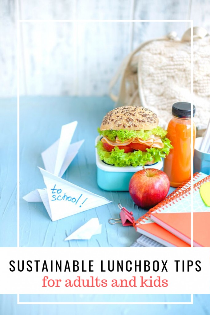 Sustainable Lunchbox Tips for Work or School Lunch