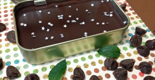 Mint Chocolate Chip Homemade Lip Balm