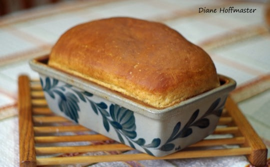easy bread recipe Make Your Own Bread