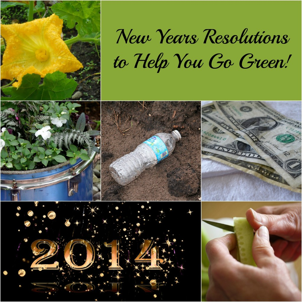 green new years resolution collage