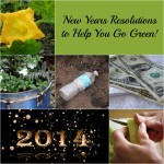 New Years Resolutions to Help You Go Green #TurnItGreen