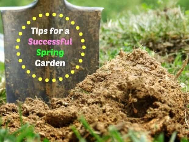 preparing a spring garden 2
