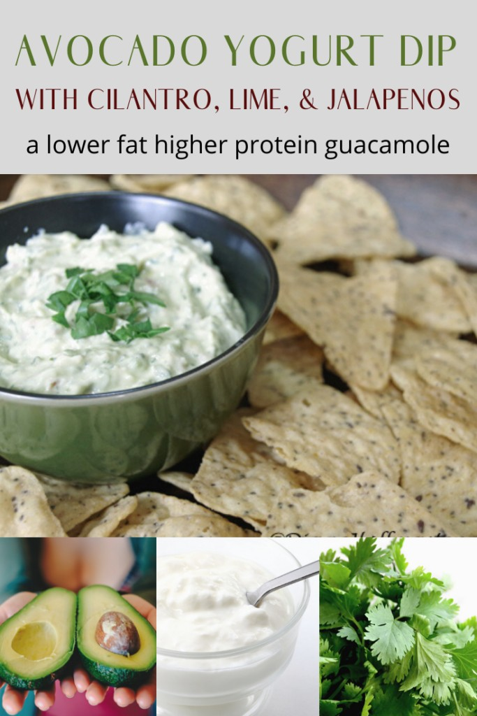 Avocado Yogurt Dip with cilantro, lime, & jalapenos is a lower fat higher protein guacamole