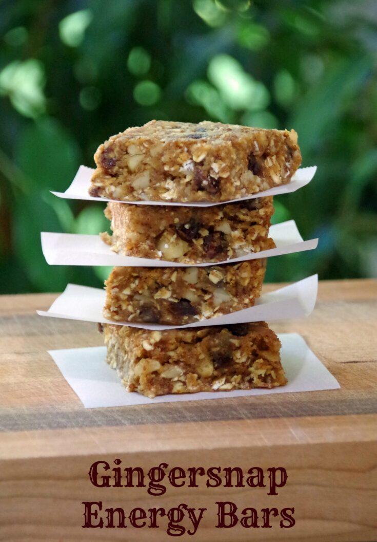 Gingersnap Energy Bar Recipe with Greek Yogurt