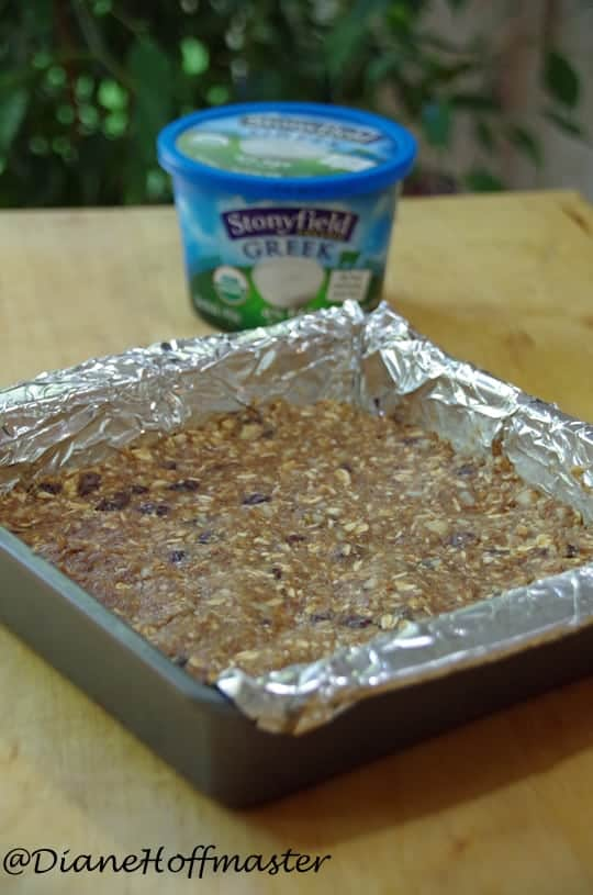 Gingersnap Energy Bar Recipe with Greek Yogurt