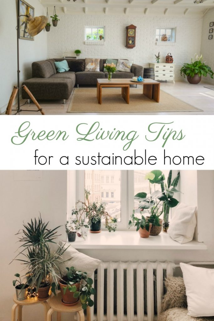 How to be an Eco Friendly Home Owner This Spring