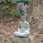 How to Create a Peaceful Backyard Space