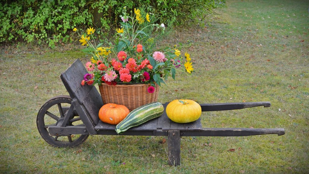 Garden Decor and Creating a Peaceful Backyard Space