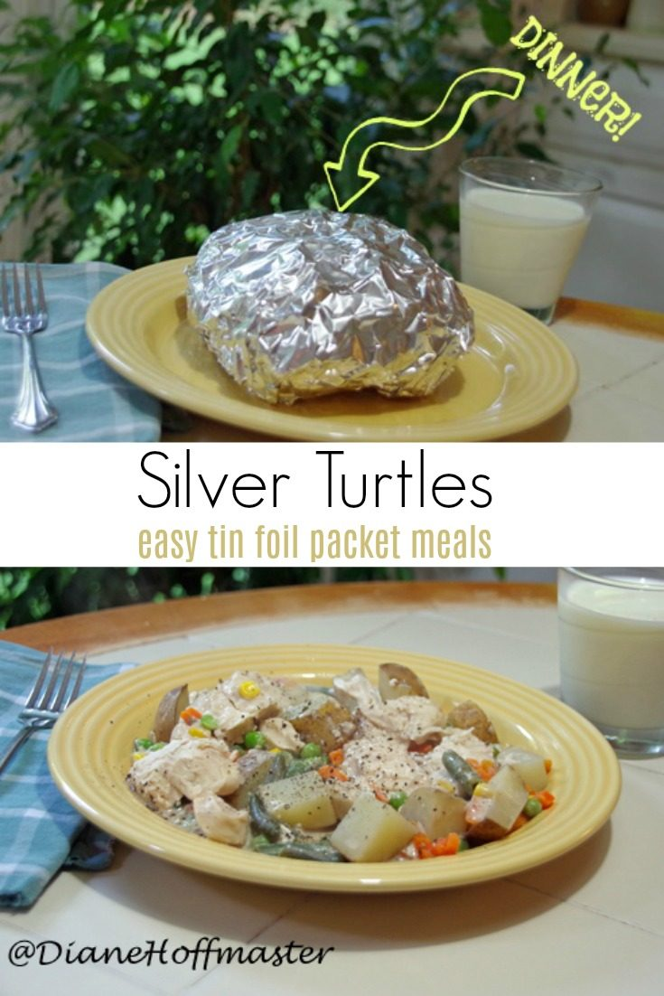 How to Make Silver Turtles