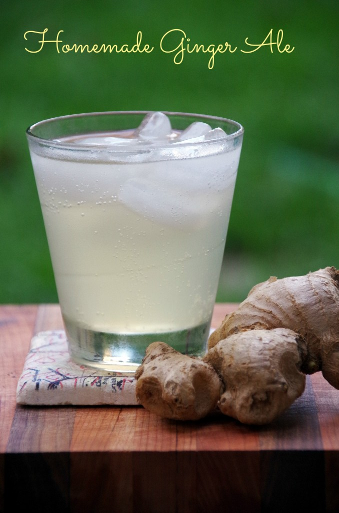 Homemade Ginger Ale 2