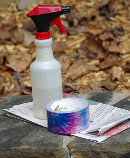 How to Make an Earwig Trap 1
