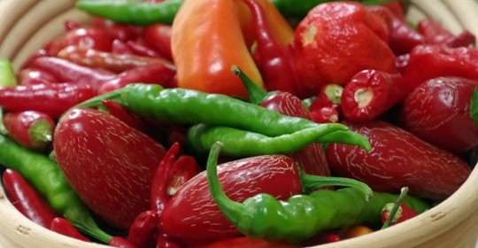 5 Ways to Preserve Hot Peppers
