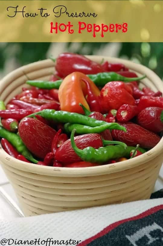 How to Preserve Hot Peppers
