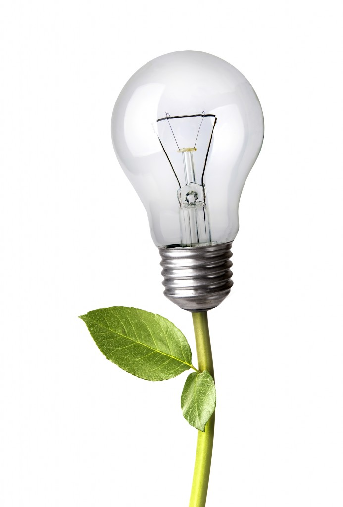 © Nexus7 | Dreamstime.com - Lightbulb As A Plant Photo