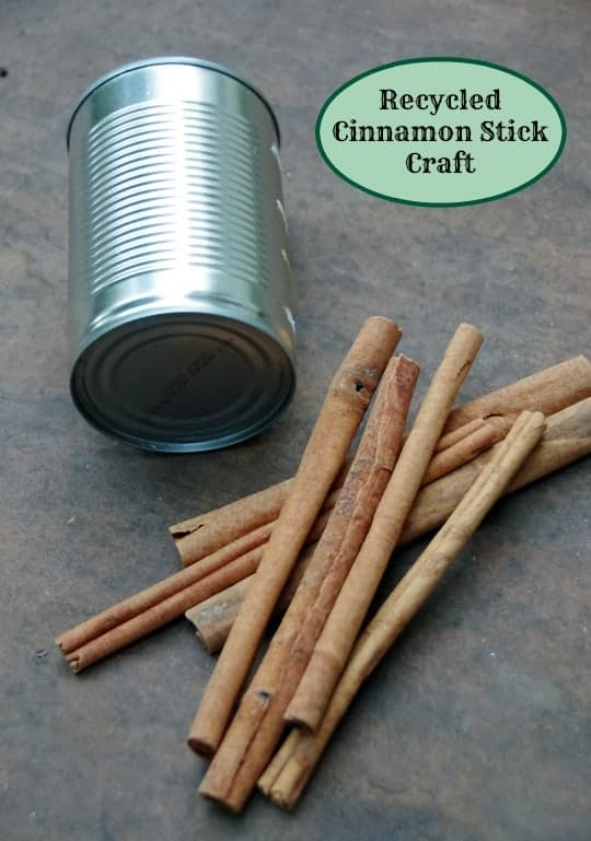 Recycled Crafts: A Cinnamon Stick Centerpiece