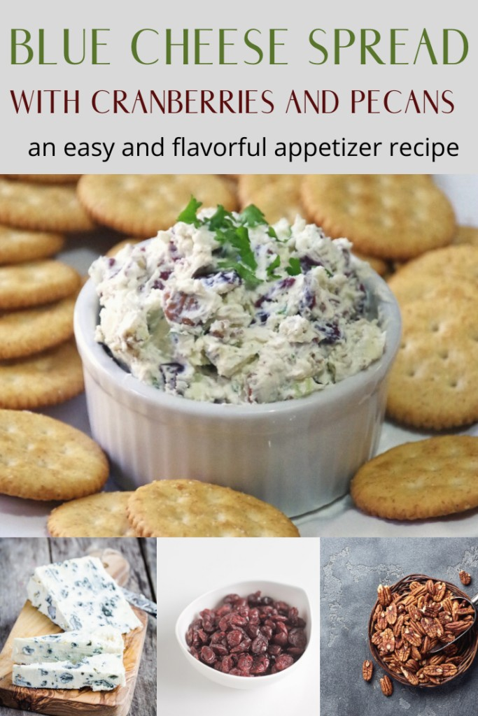 Blue cheese spread with cranberries and pecans is an easy and flavorful appetizer recipe