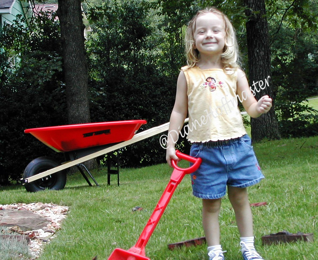 Plum Organics Toddlers 3