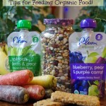 Tips for Feeding Organic Food from Infants to Teens