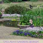 Callaway Gardens is a Beautiful Georgia Destination for Nature Lovers