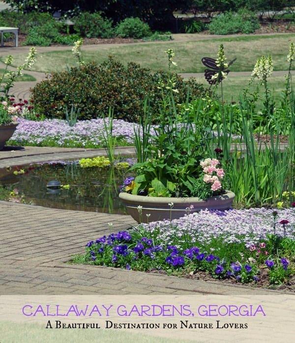 Callaway Gardens Butterfly Center