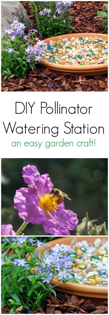 Save the Pollinators with a Honeybee Watering Station in the Garden! This is an easy garden craft to save the pollinators!